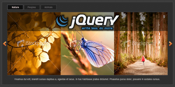 XML driven Jquery Image Slider - click for preview
